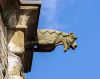 Gargoyle sculture on medieval cathedral. Mirepoix. Royalty Free Stock Photo