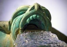 gargoyle som spottar vatten arkivfoton