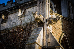 Gargoyle Statue. On a medieval church in england Stock Image