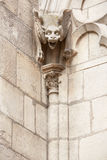 Gargoyle statue, Notre Dame de Paris Stock Photos