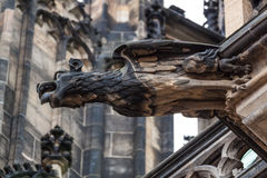 Gargoyle statue. On Saint Vitus Cathedral in Prague Royalty Free Stock Image