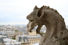 Gargoyle on the top of Notre-Dame de Paris. Close-up of gargoyle on the top of Notre-Dame de Paris Royalty Free Stock Images