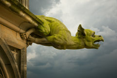 Gargoyle on Ulm Munster church. Ulm, Germany Stock Images