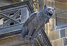 Gargoyle. At the veits cathedral in the hradschin in prague - world heritage royalty free stock image
