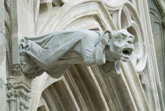 Gargoyle at the wall of the  Basilique Saint-Nazaire-et-Saint-Celse in Carcassonne, France. Royalty Free Stock Image