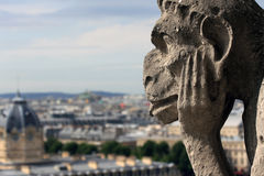 Gargoyle is watching on Paris Royalty Free Stock Photo