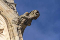 Gargoyle York Cathedral Stock Photos