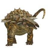 Gargoyleosaurus on White Royalty Free Stock Image