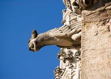 Gargoyles стоковые фото