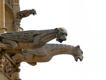 Gargoyles. At the frontside of the cathedral in Metz stock images