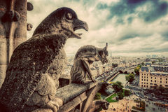 Gargoyles and chimera statues of Notre Dame over Paris, France. Vintage. Gargoyles and chimera statues of Notre Dame over Paris, France skyline. Dark clouds Royalty Free Stock Images