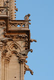 Gargoyles de Notre Dame, París, Francia Imagen de archivo libre de regalías