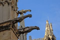 Gargoyles of the Notre Dame cathedral, Paris, France Royalty Free Stock Photography