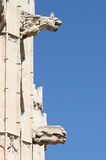 Gargoyles at La Lonja monument in Palma de Mallorca. Spain Royalty Free Stock Photo