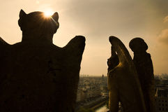Free Gargoyles Looking Over Paris Royalty Free Stock Photos - 78779968