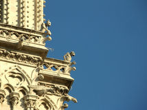 Gargoyles on Notre Dame. Gargoyles looking down the city of Paris from the tower of Notre Dame Stock Images