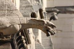 The Gargoyles of Notre Dame Royalty Free Stock Image