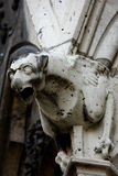 The Gargoyles of Notre Dame Royalty Free Stock Photography