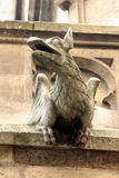 The Gargoyles of Notre Dame Royalty Free Stock Photos