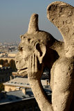 The Gargoyles of Notre Dame Stock Images