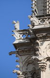 Gargoyles in Notre Dame Cathedral Royalty Free Stock Images