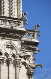 Gargoyles in Notre Dame Cathedral Royalty Free Stock Image