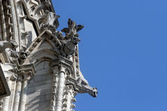 The Gargoyles of Notre Dame Cathedral, Paris Royalty Free Stock Photo