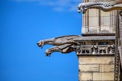 Gargoyles of Notre-Dame de Paris Stock Photos