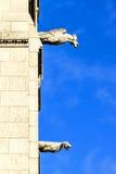 Gargoyles Sacre Coeur Stock Photography