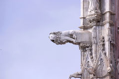 Gargoyles Siena cathedral. Gargoyles Lion Siena cathedral facade detail Stock Photo