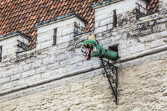 The Gargoyles of Tallinn, Estonia. The Gargoyles of Tallinn, Estonia Royalty Free Stock Image