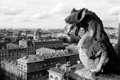 Gargoyley mot Paris Fotografering för Bildbyråer
