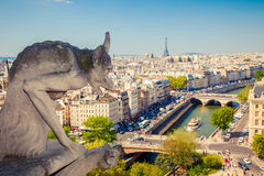 Gargulec na Notre Damae katedrze Zdjęcia Royalty Free