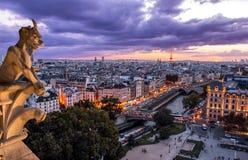 Gargulec na Notre Damae W Paryż przy zmierzchem Obrazy Stock