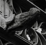 Gargulec z kształtem lew Fotografia Royalty Free