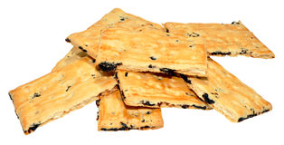 Garibaldi Biscuits Royalty Free Stock Images