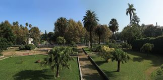 Garibaldi garden in Palermo Stock Photography