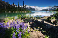 Garibaldi Lake Royalty Free Stock Image