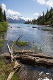 Garibaldi Lake-afvloeiing, tussen Squamish en Fluiter, Brits Colombia stock afbeeldingen