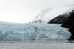Garibaldi lodowiec na archipelagu Tierra Del Fuego Fotografia Royalty Free