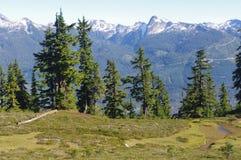 Garibaldi Provincial Park Stock Photos