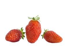 Gariguette français aimé d'isolement de fraises Collection de fruits entiers et coupés de fraise d'isolement sur le blanc Images stock