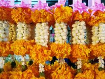 garland Foto de archivo libre de regalías