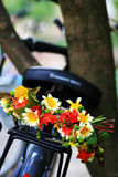 Flower arrangement. A beautiful garland on a bike royalty free stock photo
