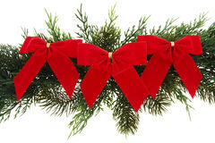 Garland with Bows. Green tree garland with velvet bows isolated on white Stock Photos