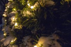 Garland on a Christmas tree. Light bulbs. Happy New Year stock images