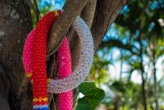 Garland. Colorful garland hang on tree Royalty Free Stock Photo