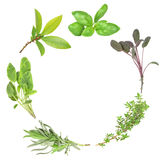 Garland of Herbs Stock Photo