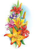 Garland of lilies and irises Royalty Free Stock Image