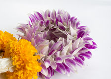 Garland market flower floral buddhism nature concept Royalty Free Stock Image